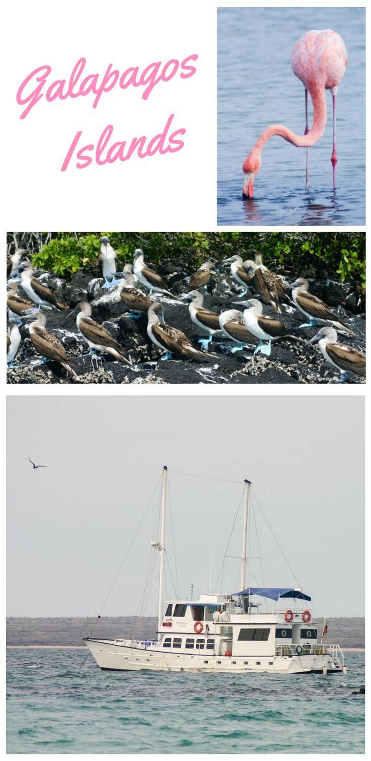 World Heritage Site Galapagos Island