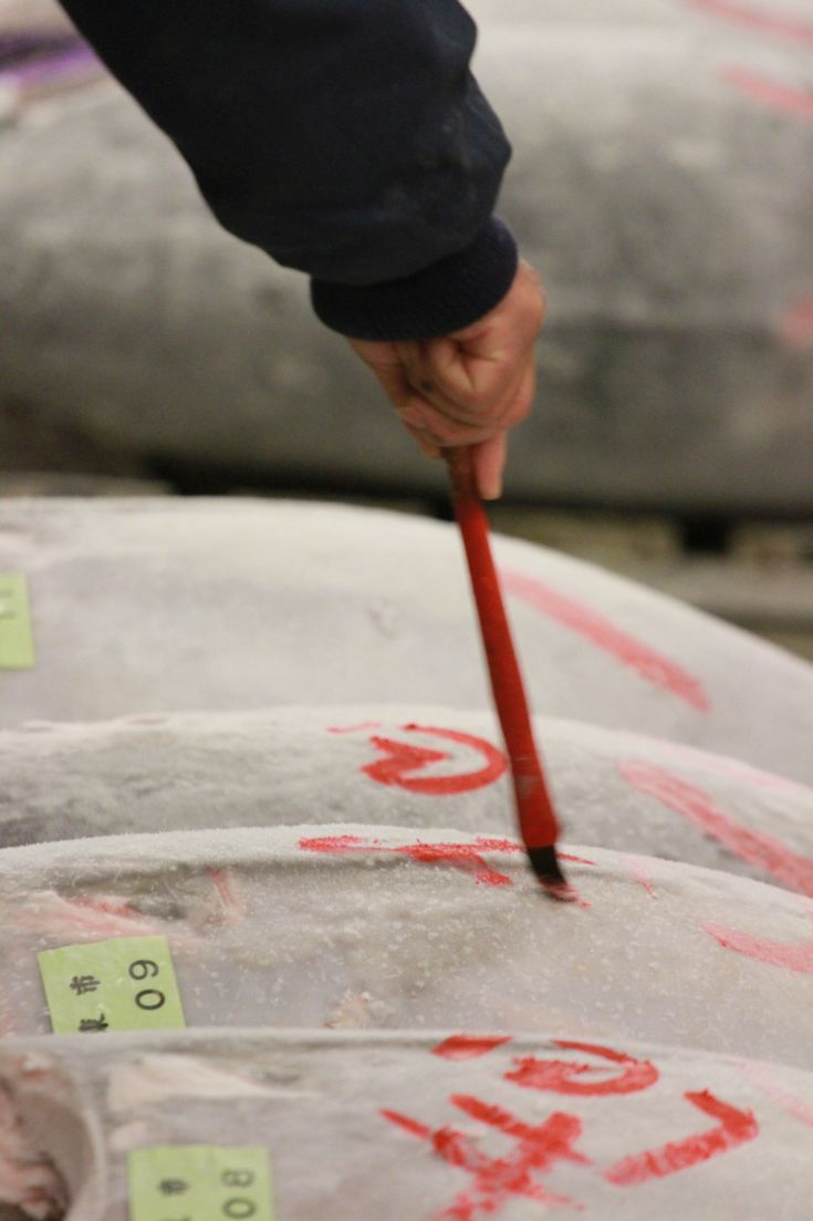 A close up - marking the tuna at the famous fish market in Tokyo.