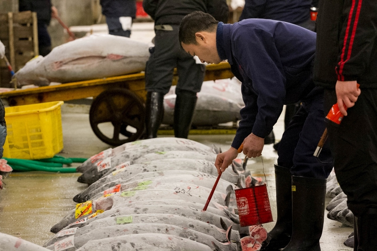 Man paints his symbol signifying he's bought this tuna at the tuna auction at the Tsukiji Fish Market in Tokyo.