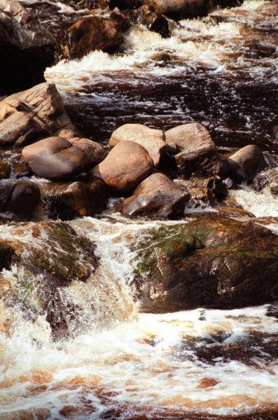 Скалистая река с ржавой цветной водой. Национальный парк Таман Негара Национальный парк Таман Негара Natural Rock Slide River Taman Negara 1 397x600