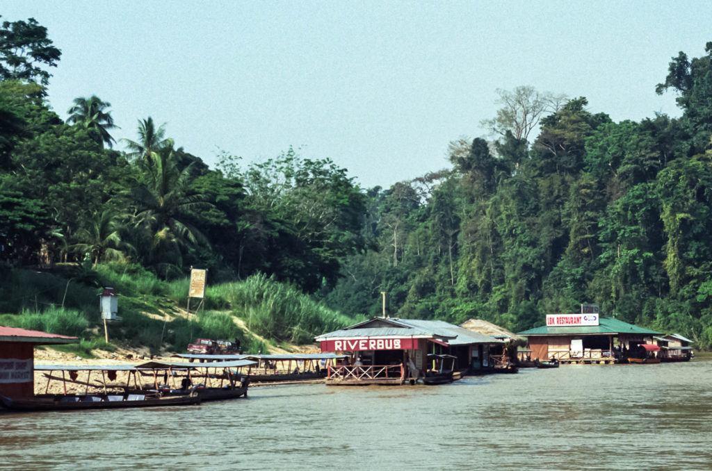 Три предприятия на реке, один ресторан и два причала. Национальный парк Таман Негара Национальный парк Таман Негара Scene Along River Taman Negara 1 1024x678