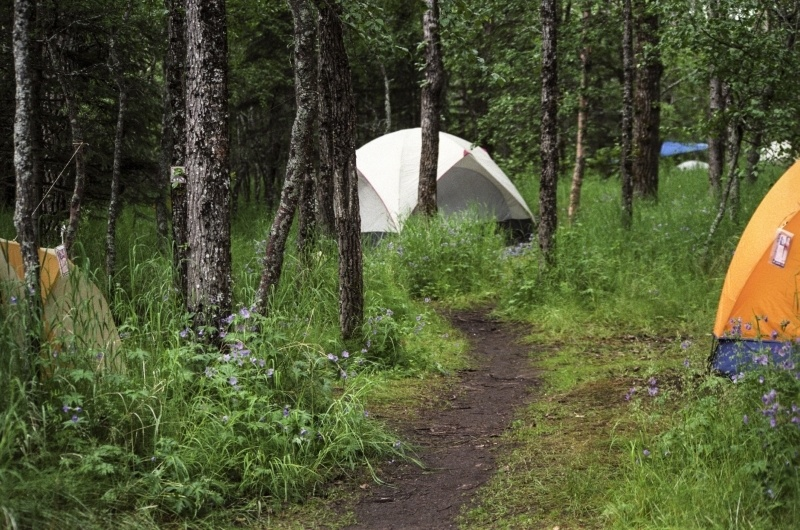 Camping in Katmai National Park.
