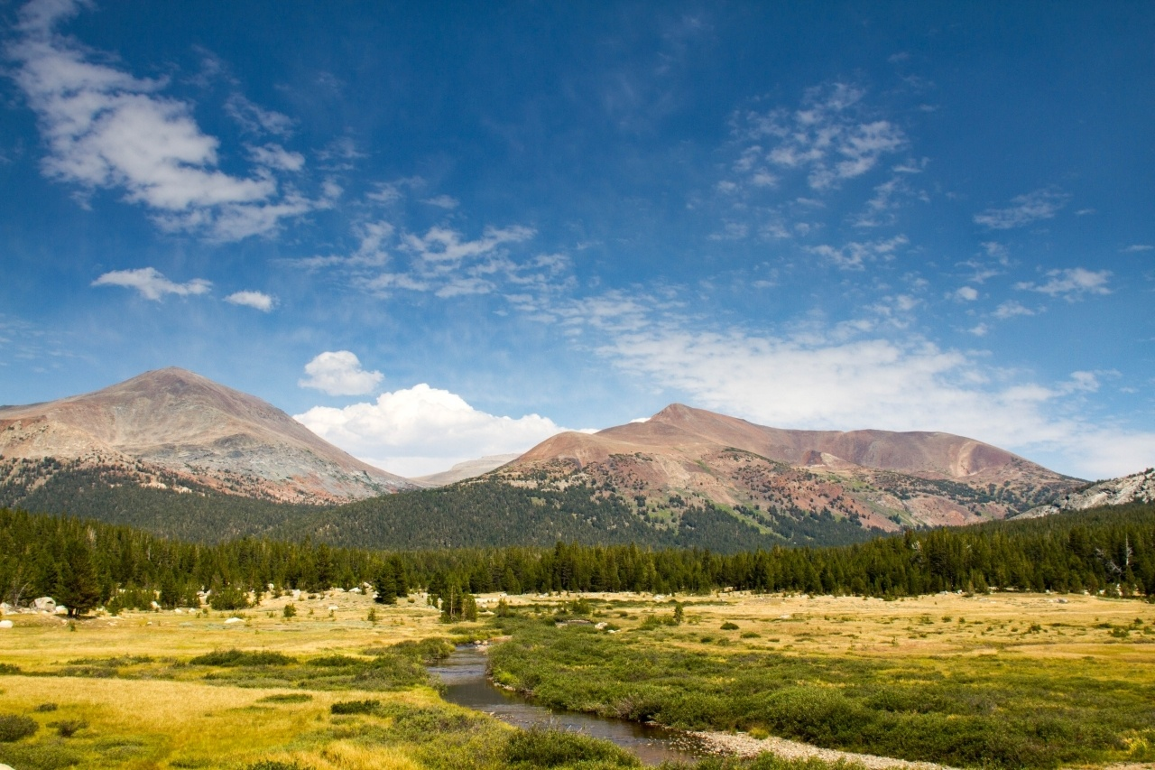 Tuolumne Meadows - get out of the car and go for a hike in Yosemite's beautiful meadows