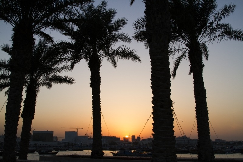 Palm trees silhouetted on the Doha Corniche promenade.