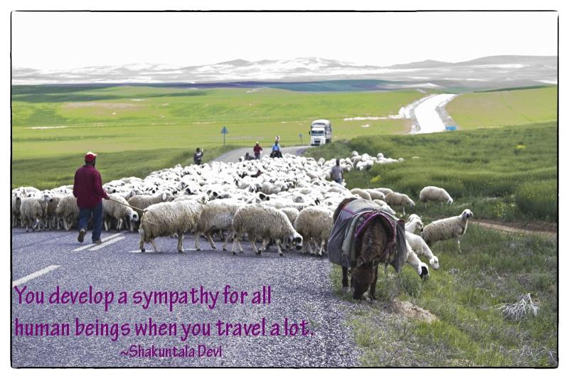 Travel Inspiration Sympathy