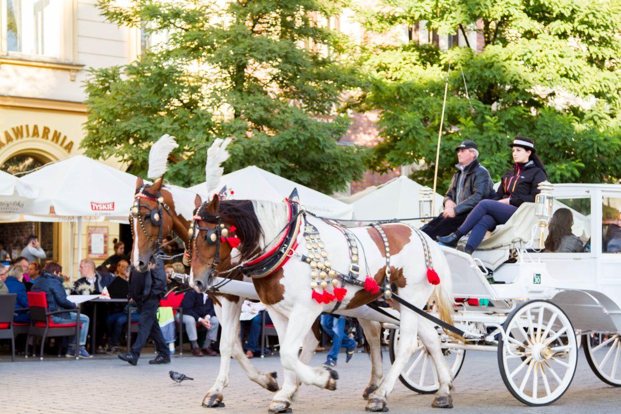 Krakow - Horse-drawn cart