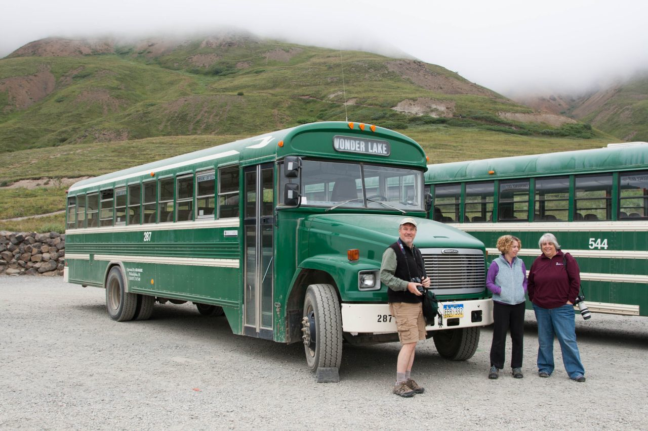 Green Denali park shuttle buses with tourists