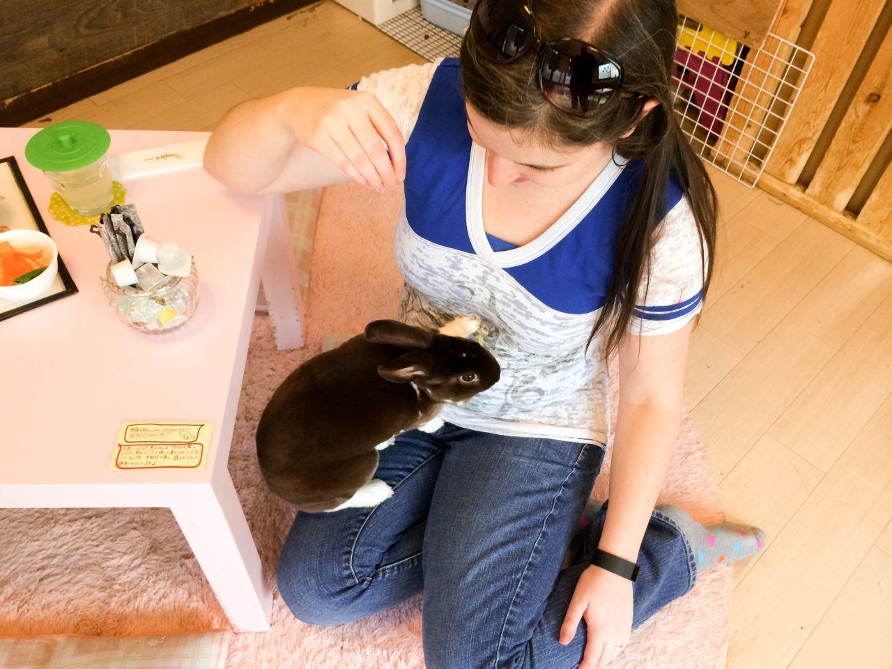 Rabbit on Devon's lap as she feeds her treats