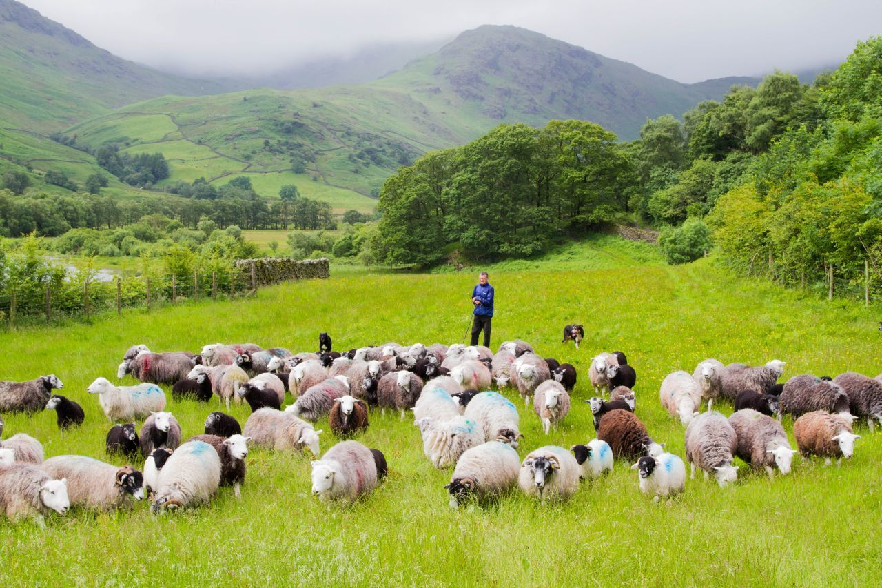 20 Views of the Amazing Lake District