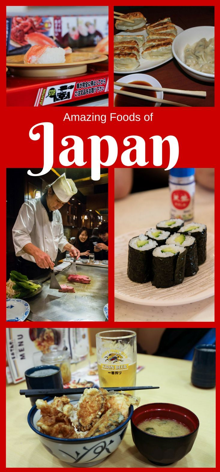 The best thing about a visit to Japan is discovering the best Japanese foods!