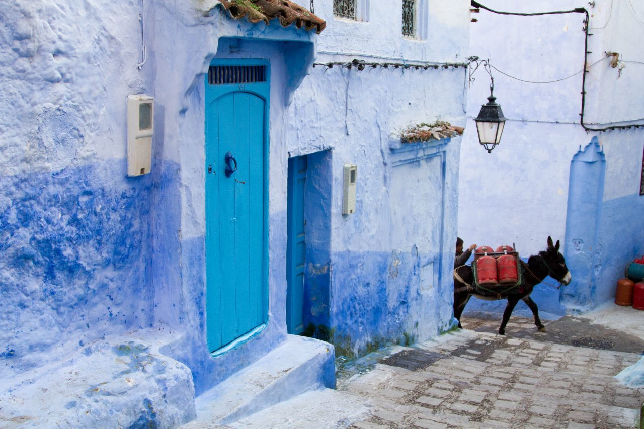 Basking in the Blue in Chefaouen, Morocco