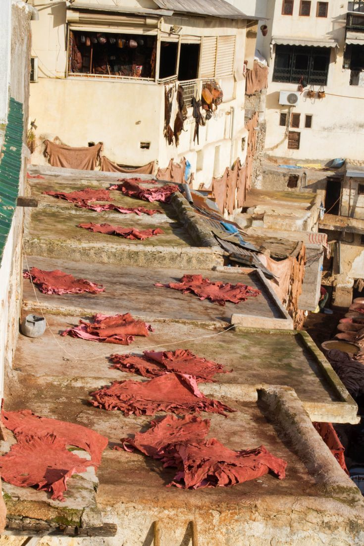 Exploring The Souk and Tannery of Fez, Morocco