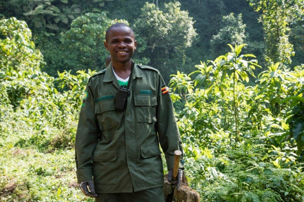 Our Wildlife Authority Guide who led us to see the mountain gorillas of Bwindi in Uganda.