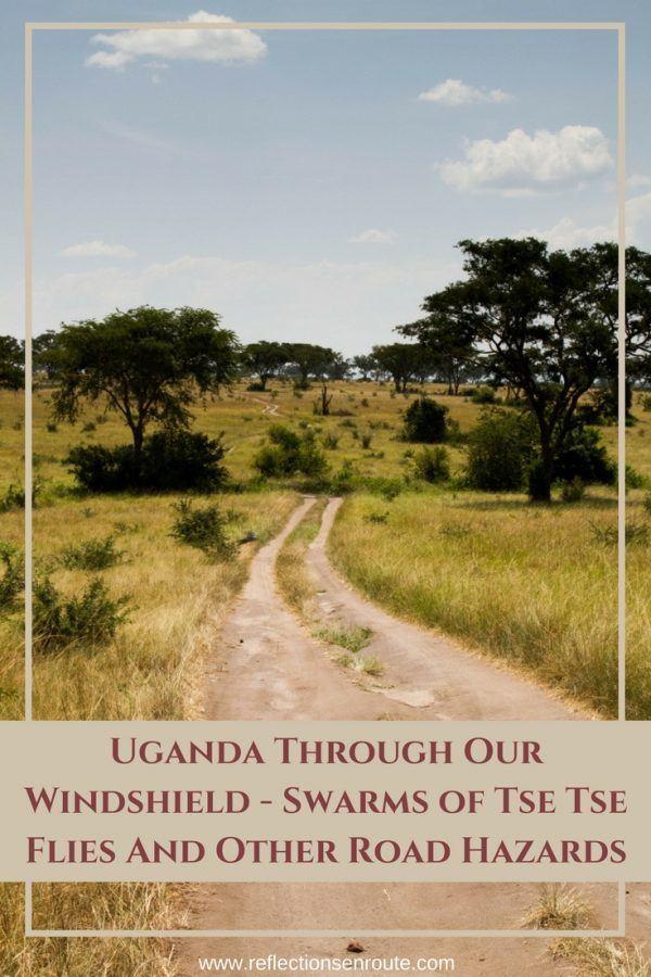 Plan your next safari! take a self drive safari in Uganda. Click to learn more!