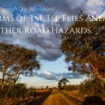 Uganda Through Our Windshield -Swarms of Tse Tse Flies And Other Road Hazards