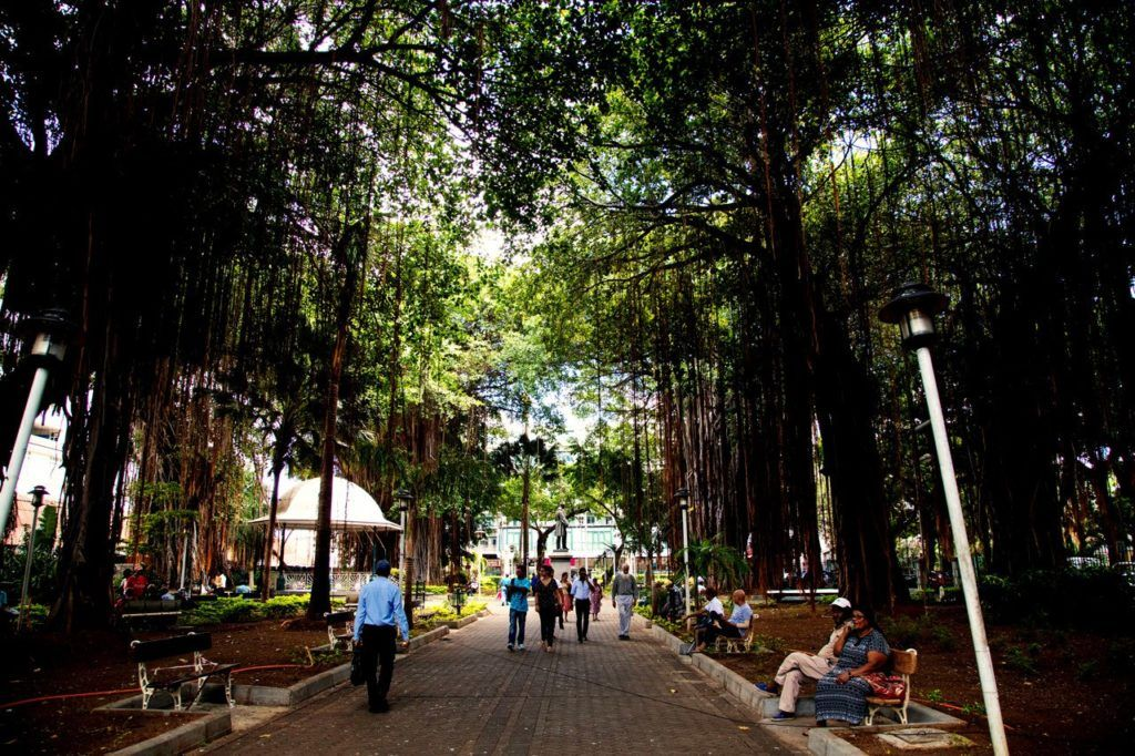 Things to do in Port Louis should include relaxing in the Jardin de la Companie.