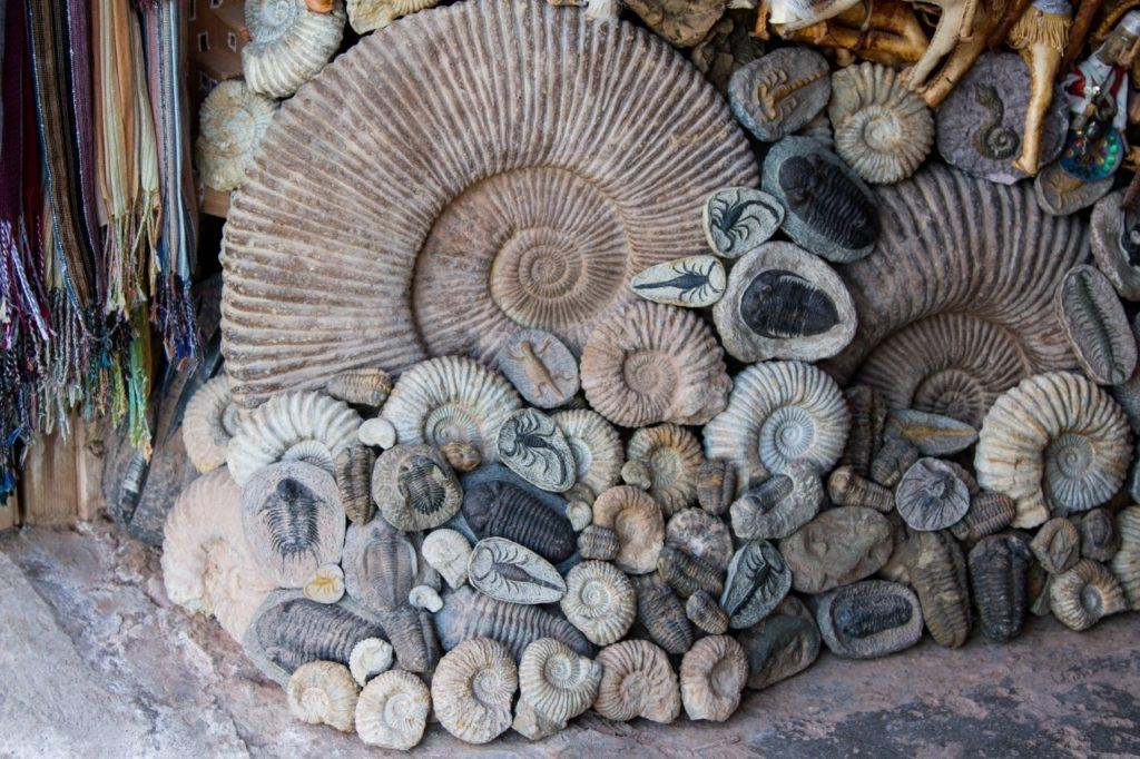 Fossils of all sizes being sold in Ait Benhaddou on a day trip of the High Atlas Mountains.