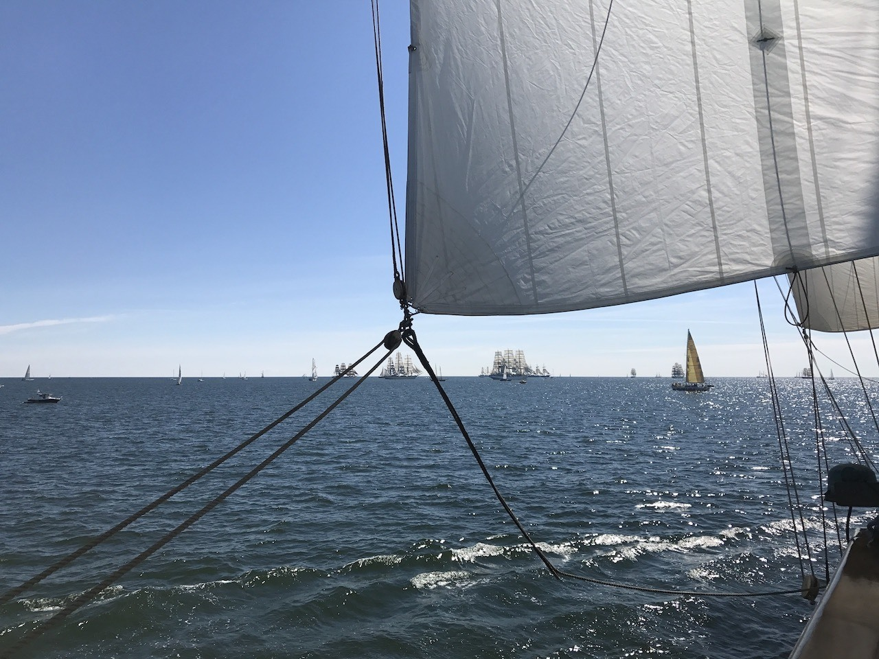 Tall ship trips are becoming more popular; it's all about learning how to sail!