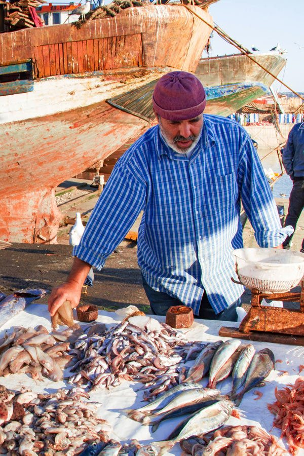 Essaouira Fish Market at the Scala du Port, the fisherman sells many types of fish.