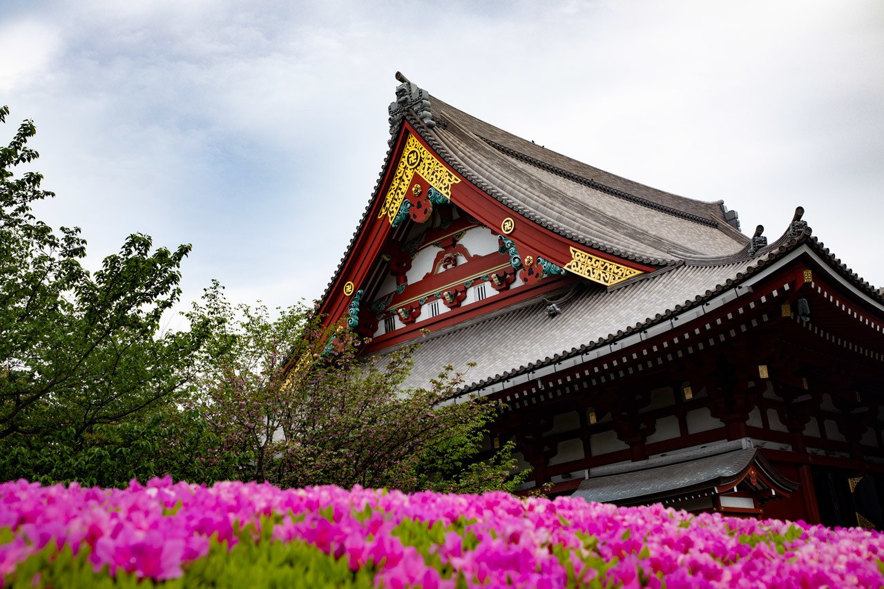 Spring in Japan at Sensoji Temple