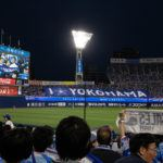 Attending a Japanese Baseball Game
