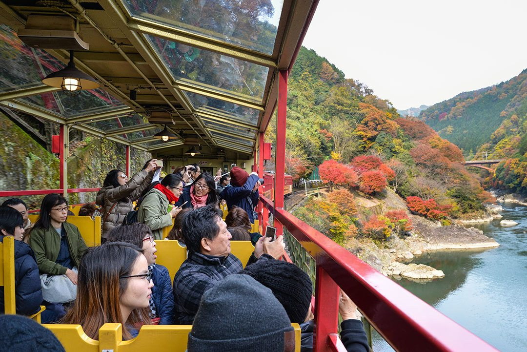 Autumn in Japan includes viewing the foliage, like from the Sagano Train.