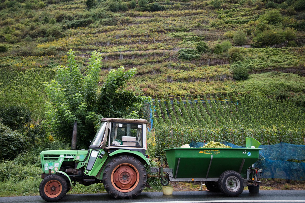 Как добраться до Бернкастель - взять трактор? Круиз по реке Мозель Круиз по реке Мозель и очаровательная однодневная поездка Бернкастель Bernkastel 1 24