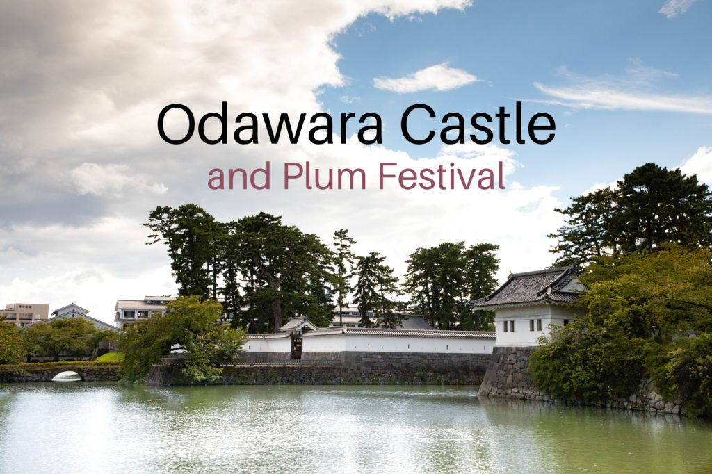Odawara Castle and moat