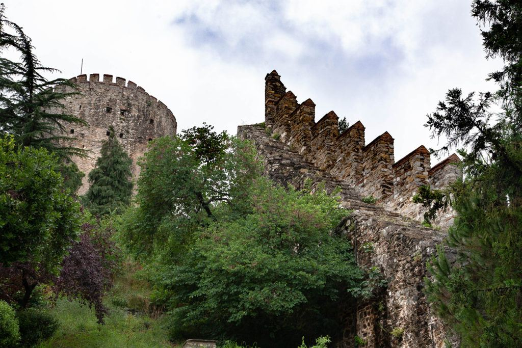 Fortress walls and tower.