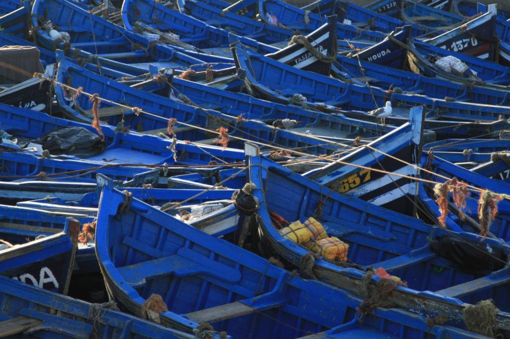 Blue fishing boats parked together and tied up for the night in Essaouira harbor.