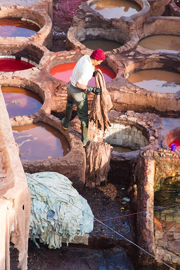 Fez tannery worker dips the pelts into the dye pots.